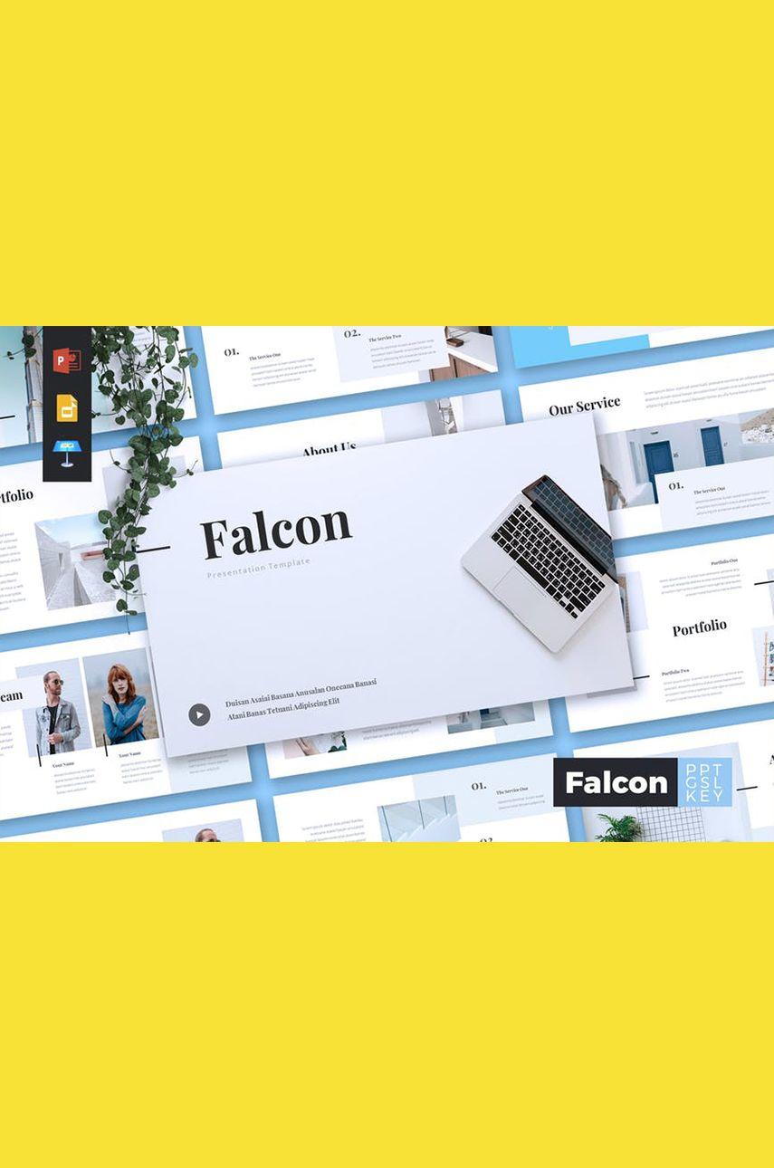FALCON - Company