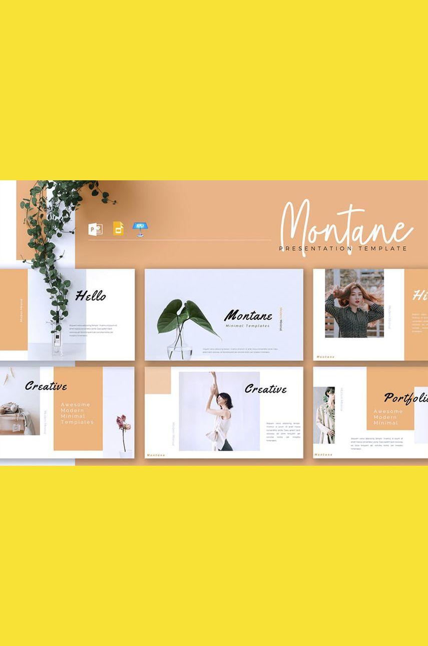 MONTANE - Creative